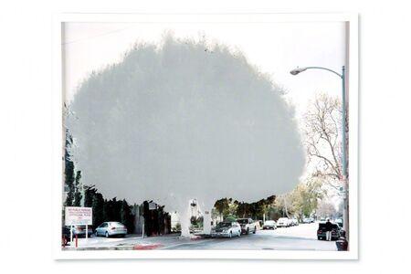 Yoko Kanayama, 'ficus  [s. dunsmuire ave. at wilshire blvd.] ', 2009