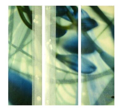 Jane Guthridge, 'The Space Between Triptych 21'