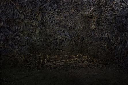 Osamu James Nakagawa, 'Gama #007', 2010