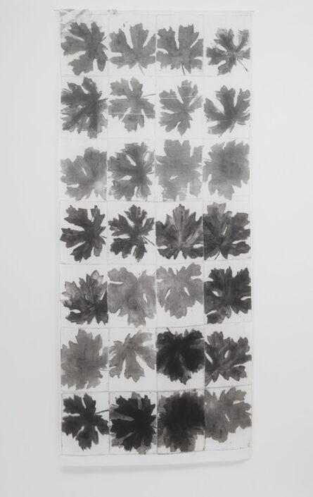 Nora Pauwels, 'Big Leaf Maple', 2015