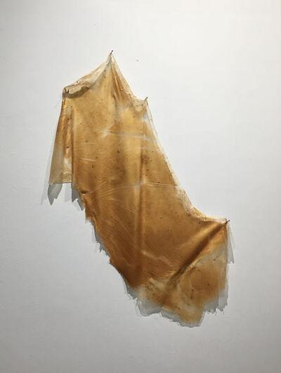 Lesley Bodzy, 'Gold Wall Drape', 2020