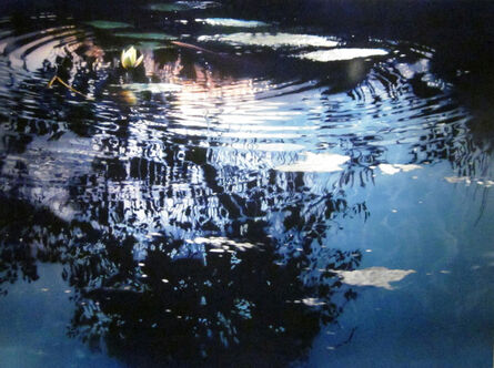 David T. Kessler, 'Blossoms In Lace'