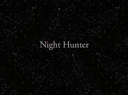 Stacey Steers, 'Night Hunter (film)'
