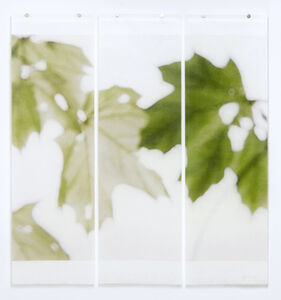 Jeri Eisenberg, 'Under the Norway Maple', 2013