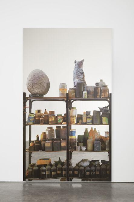 Michelangelo Pistoletto, 'Scaffali - Accademia de Bellas Artes, La Habana con uovo (Shelves – Academy of Bellas Artes, La Habana with egg)', 2015