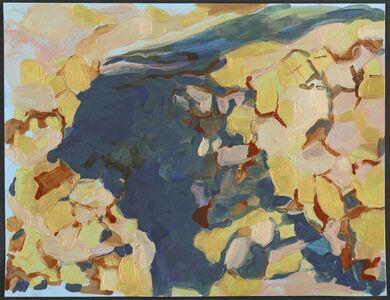 Ranu Mukherjee, 'Cave Drawing', 2015