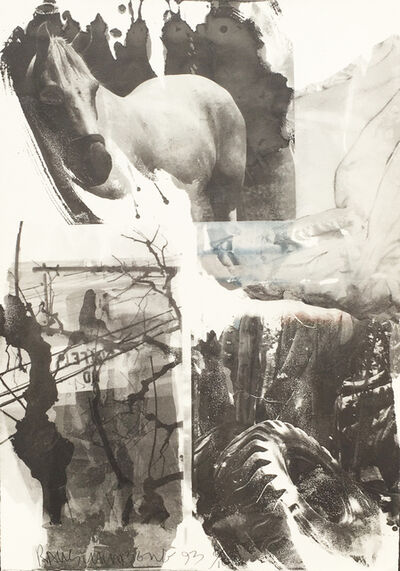 Robert Rauschenberg, 'Horse Silk (Deluxe Edition)', 1993