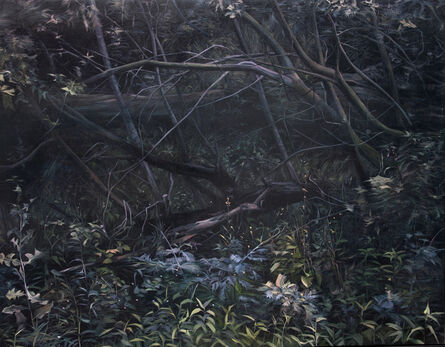 Shannon Smiley, 'Dark Forect, Northcote', 2013