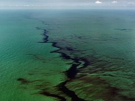 Edward Burtynsky, 'Oil Spill #10, Oil Slick at Rip Tide, Gulf of Mexico, June 24, 2010', 2010