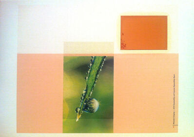 Marc Handelman, 'Toward an Image of Ethical Procurement, (I)', 2012