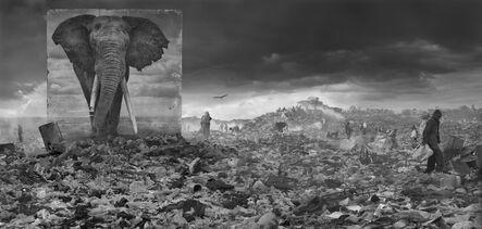 Nick Brandt, 'Wasteland with Elephant', 2015