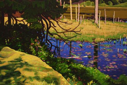 Clayton Anderson, 'Deadwood Pond'