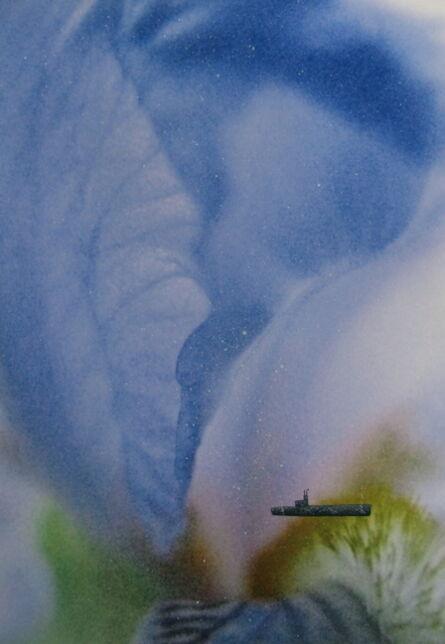 Harvey Weiss, 'Blue Iris', 2016