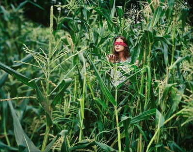 Carolyn Monastra, 'The Corn Field', 2003
