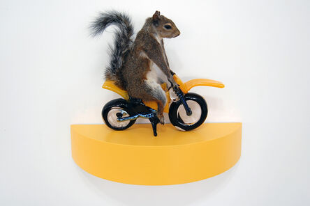 Angus M. Powers, 'The Squirrels - yellow', 2018