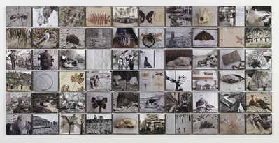 Michelle Stuart, 'Earth Memory: Seekers', 2011