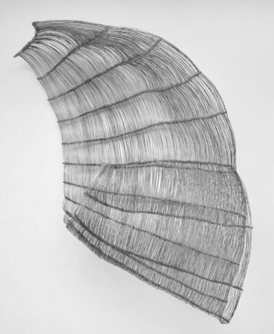 Barbara Salvucci, 'untitled', 2001