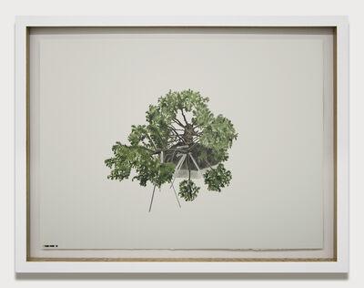 Edwin Monsalve, 'Prototipos para una naturaleza rehabilitada (1.2)', 2014