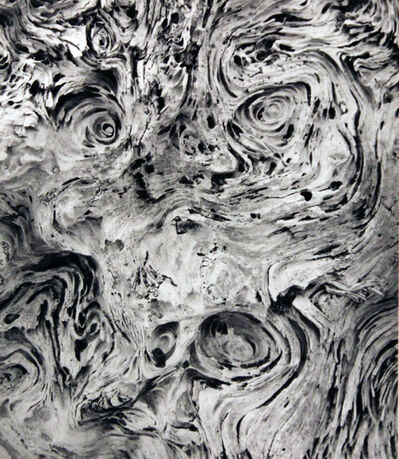 Wynn Bullock, 'Untitled', 1972