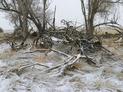 Andrew Moore, 'Buckboard Wagon, Sheridan County, Nebraska', 2013