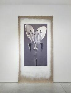 Linarejos Moreno, 'Art Forms in Mechanism XVIII', 2016
