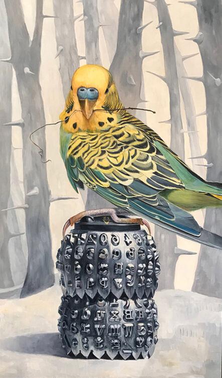 Deborah Davidson, 'Bird Stories', 2018