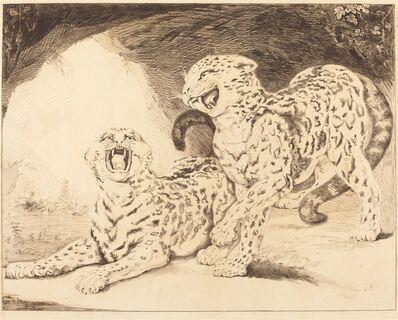 Samuel William Reynolds I after James Northcote, 'Leopards', 1798