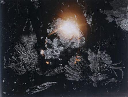 Sebastiaan Bremer, 'Dead Cock and Contemplative Magpie', 2007