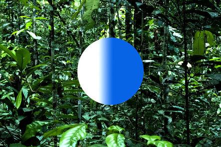 Fabian Albertini, 'Nature's form VII', 2019
