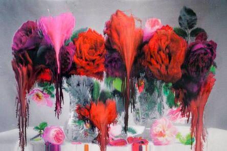 Nick Knight, 'Dog (horizontal)', 2012