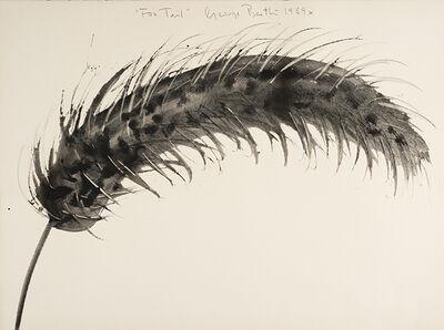 George Bartko, 'Fox Tail', 1989