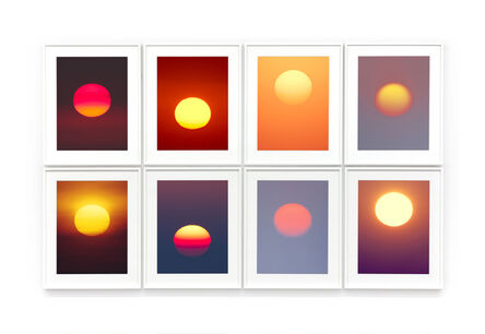 Thomas Weinberger, 'apricum exemplare', 2013