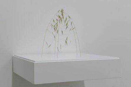 Christiane Löhr, 'Kleine Kuppel (piccola cupola)', 2020
