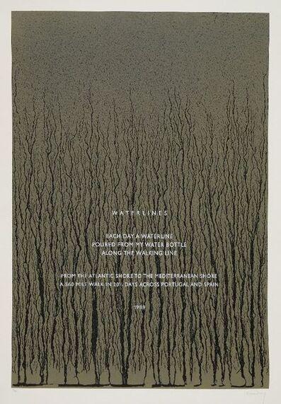 Richard Long, 'Waterlines', 1989