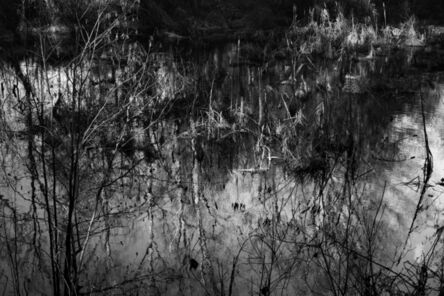 Richard Skoonberg, 'The Quiet Pool', 2020