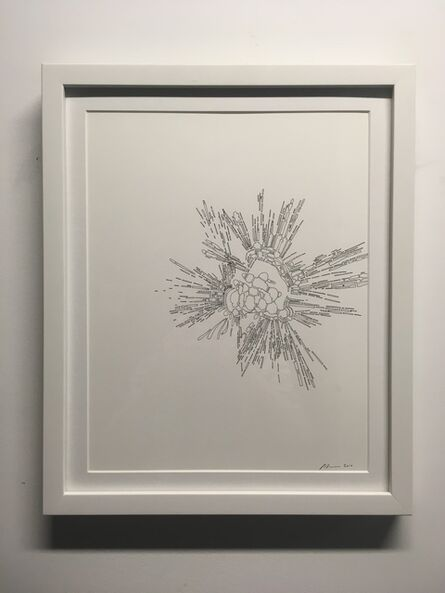 Colin Keefe, 'Architectural Pollination Study 26 (Star, Star)', 2010