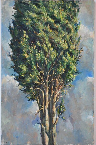 Ilan Baruch, 'Brosh', 2014