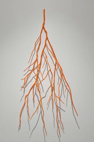 Shayne Dark, 'Bough Laden with Fluorescent Orange', 2012