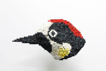 Shawn Smith, 'Acorn Woodpecker', 2015