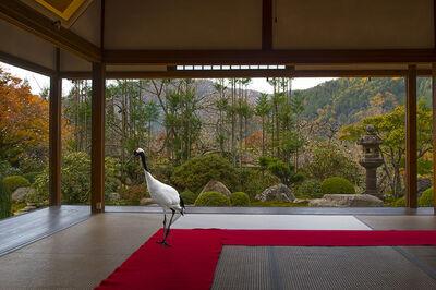 Karen Knorr, 'Journey to the Great Sage , Jikko –in Temple, 0hara', 2015
