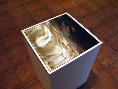 Marilou Winograd, 'Reflex, cx espelhos', 2014
