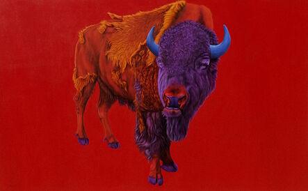 Helmut Koller, 'Buffalo on a Red Background', 2005
