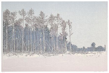 Grietje Postma, 'Landscape2018-II', 2018