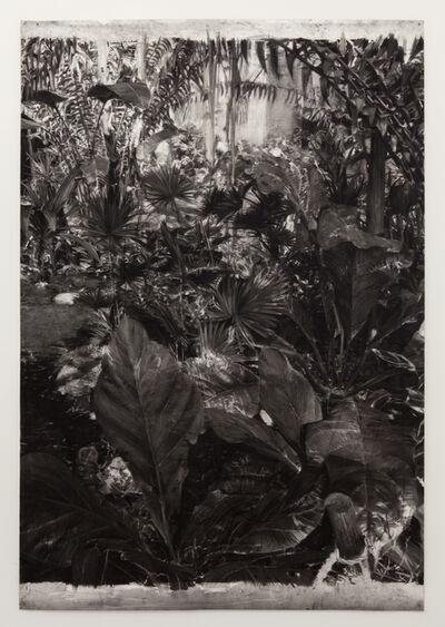 Birde Vanheerswynghels, 'Untitled', 2015