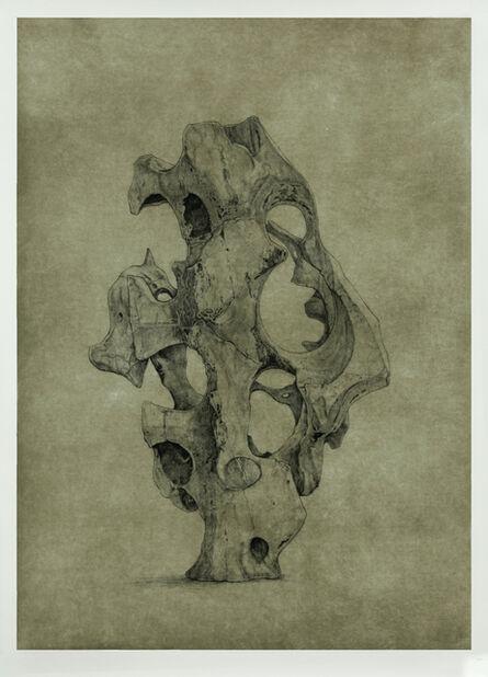 Shao Yinong & Mu Chen 邵逸农 & 慕辰, 'Objects of Nature - Shangyong', 2014
