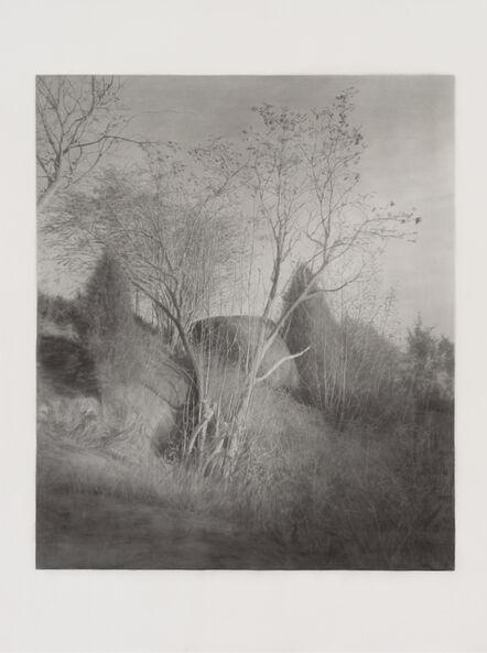 Gunnel Wåhlstrand, 'The Rowan Tree', 2017