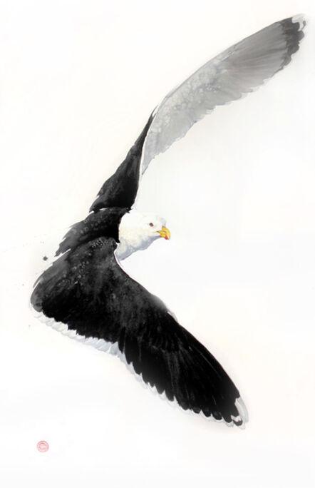 Karl Martens, 'Great Black Backed Gull'