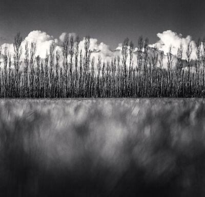 Michael Kenna, 'Poplar Trees and Cumulus Clouds, Kirwee, Canterbury, New Zealand', 2013