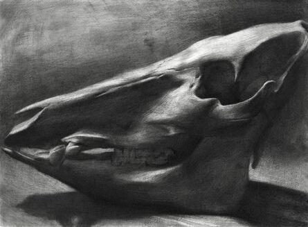 Evan Kitson, 'Boar Skull', 2018