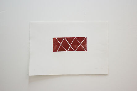 Sheroanawë Hakihiiwë, 'Yakirawë', 2013